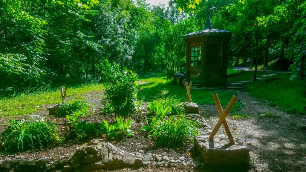 المحمية النباتية بتبليسي تبدو كأنها غابة أكثر من حديقة
